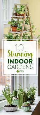 Indoor Gardening Ideas Fall Small Indoor Garden Ideas Wonderful Mini Indoor Gardening