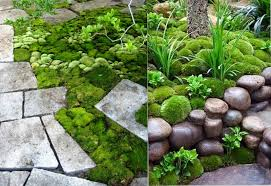 20 amazing garden design ideas brisk post