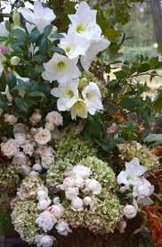 36 best flower friday images on pinterest flower power flowers