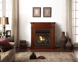 amazing living room design have gas fireplace repair front red