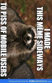 Raccoon Meme - evil plotting raccoon meme funny pinterest raccoons meme