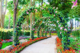 beautiful flower arches with walkway in ornamental plants garden