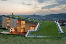 Building A House On A Slope Exploring The World Of Green Roofs And Underground Homes