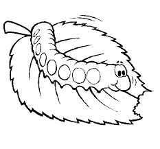 free hungry caterpillar coloring pages kids coloring point