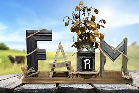 amazon com farmhouse decor sign farm word standing with