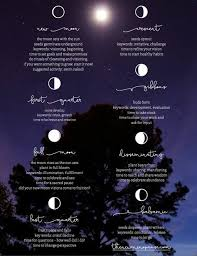 moon phases poster by bronwyn simons moon