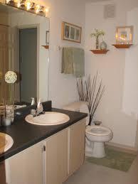 bathroom decor ideas for apartment apartment bathroom decorating ideas on a budget seo2seo com