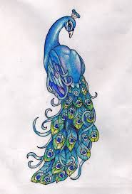 the 25 best peacock drawing ideas on pinterest peacock sketch