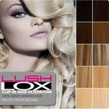 goldie locks clip in hair extensions 82 best lush locks hair extensions images on