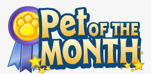 of the month pet of the month webkinz wiki fandom powered by wikia