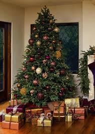 balsam hill trees most beautiful tree decorating ideas balsam hill