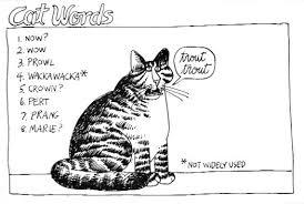 caturday felid kliban cat cats and cat