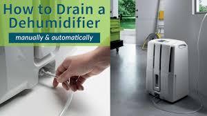 Dehumidifier Basement Dehumidifier Buying Guide Sylvane