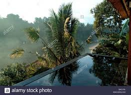 indonesia bali the private swimming pool of a panoramic view indonesia bali the private swimming pool of a panoramic view pool villa suite at the ubud hanging gardens resort member of