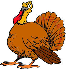 Funny Turkey Videos Thanksgiving 29 Best Thanksgiving Funny Pictures Images On Pinterest Happy