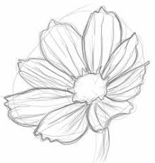 the mega list of floral drawing tutorials floral drawing