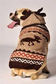 moose handmade sweaters sweaters for dogs