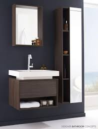Bathroom Mirrors With Storage by Bathroom Beautiful Tall Bathroom Furniture In Espresso Finish