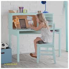 Fun Desks Unique Fun Chairs For Kids Room Curlybirds Com
