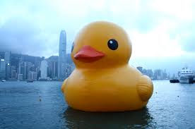 this giant rubber duck is coming to take over the three rivers