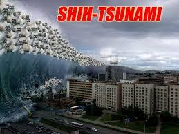 Sharknado Meme - image 575253 sharknado know your meme