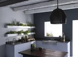 54 best indoor herb gardens images on pinterest plants kitchen