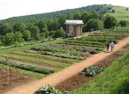 self sustaining garden episode 177 how thomas jefferson gardened the self sufficient