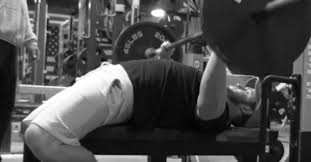 building the raw bench press elite fts