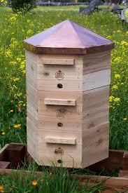 Backyard Beehive Beekeeping In Parker Colorado New Town Ordinance