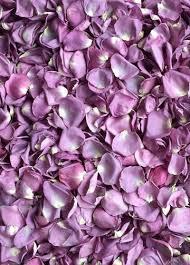 flower petals petals silk wedding flowers afloral