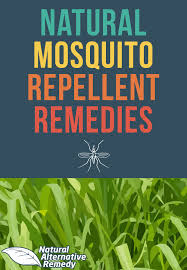 Mosquito Repellent For Home by 5 Simple U0026 Effective Natural Mosquito Repellent Recipes