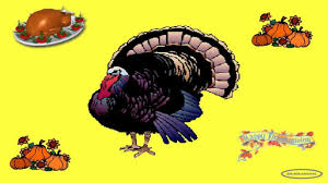 funny thanksgiving ecards images of funny thanksgiving wallpaper for sc
