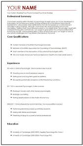 internship cv profile how to make resume in word format