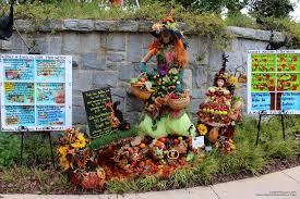 halloween scarecrows phillip u0027s natural world