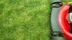 9 tips for starting a lawn care business