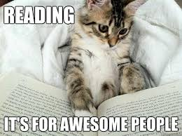 Reading Meme - reading it s for awesome people reading kitty quickmeme