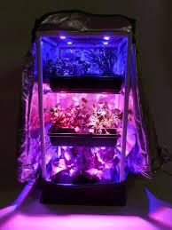 illumitex led grow lighting es2s at green spirit farms