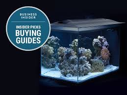 r j enterprises fusion 50 gallon aquarium tank and cabinet the best saltwater aquariums you can buy business insider