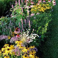 filling flower garden gaps perennial gardening gardener u0027s supply