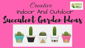 creative indoor and outdoor succulent garden ideas youtube
