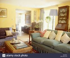 Pale Yellow Living Room by Pastel Yellow Cushions On Pale Green Sofa In Yellow Country Living