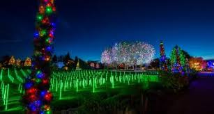 trail of lights chatfield coupon special events denver botanic gardens