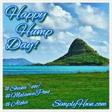 100 best simply hawaiian images on ohana happy and