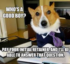 Legal Memes - the best of the lawyer dog meme