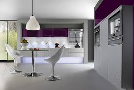 cuisine aubergines cuisine aubergine et grise p44 45 safari ambiance choosewell co
