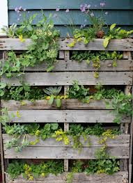 Pallet Garden Wall by Pallet Garden U2013 Inspired By Stacy