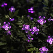 innoo tech solar fairy lights string 50 led garden flower blossom