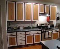 painted cabinets with wood doors pilotproject org