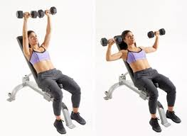 Chest Workout Dumbbells No Bench Fast Track Chest Training Oxygen Magazine