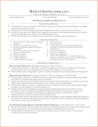 professional analyst resume sample real resume help professional